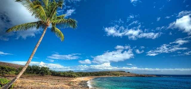 7 Of The Best Beaches of Hawaii You Should Not Miss!