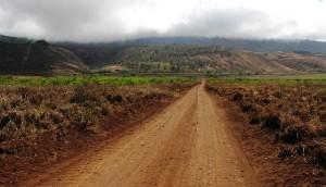 off-road-lanai
