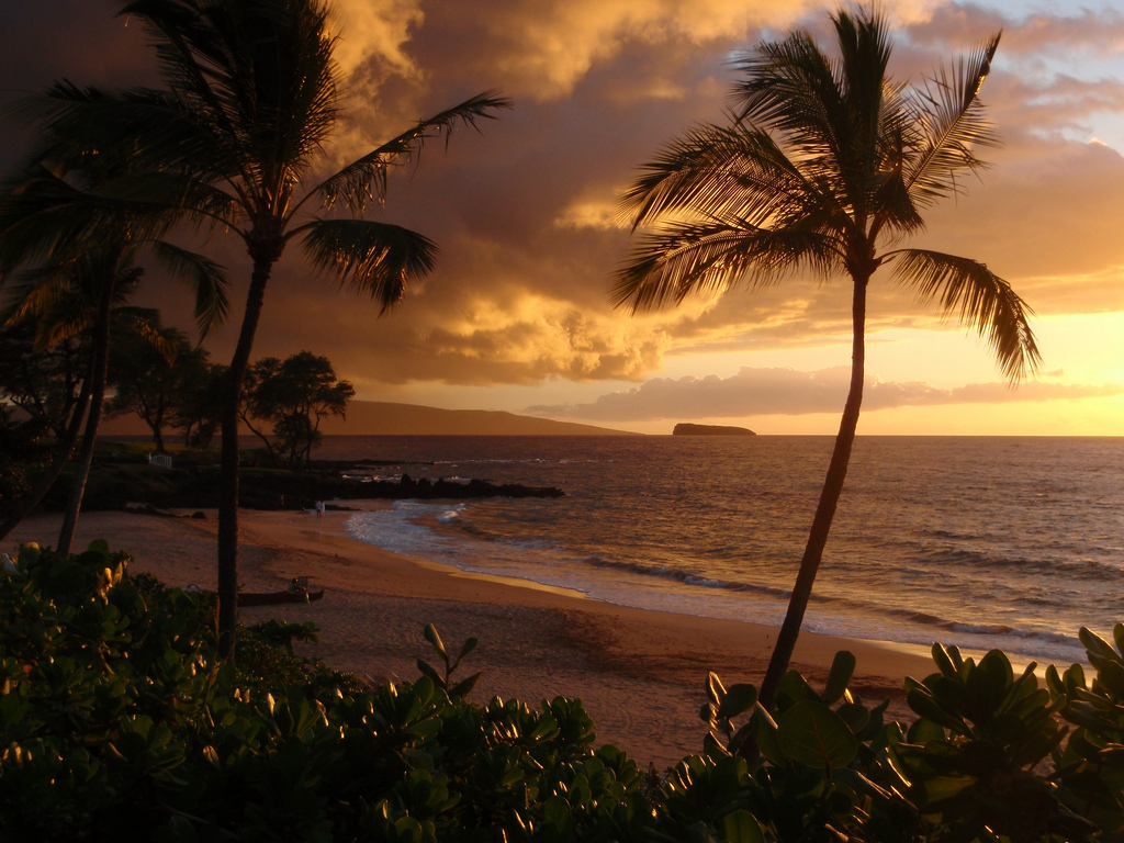 Hawaii Beach House View