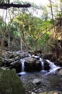 Kapena Falls Honolulu