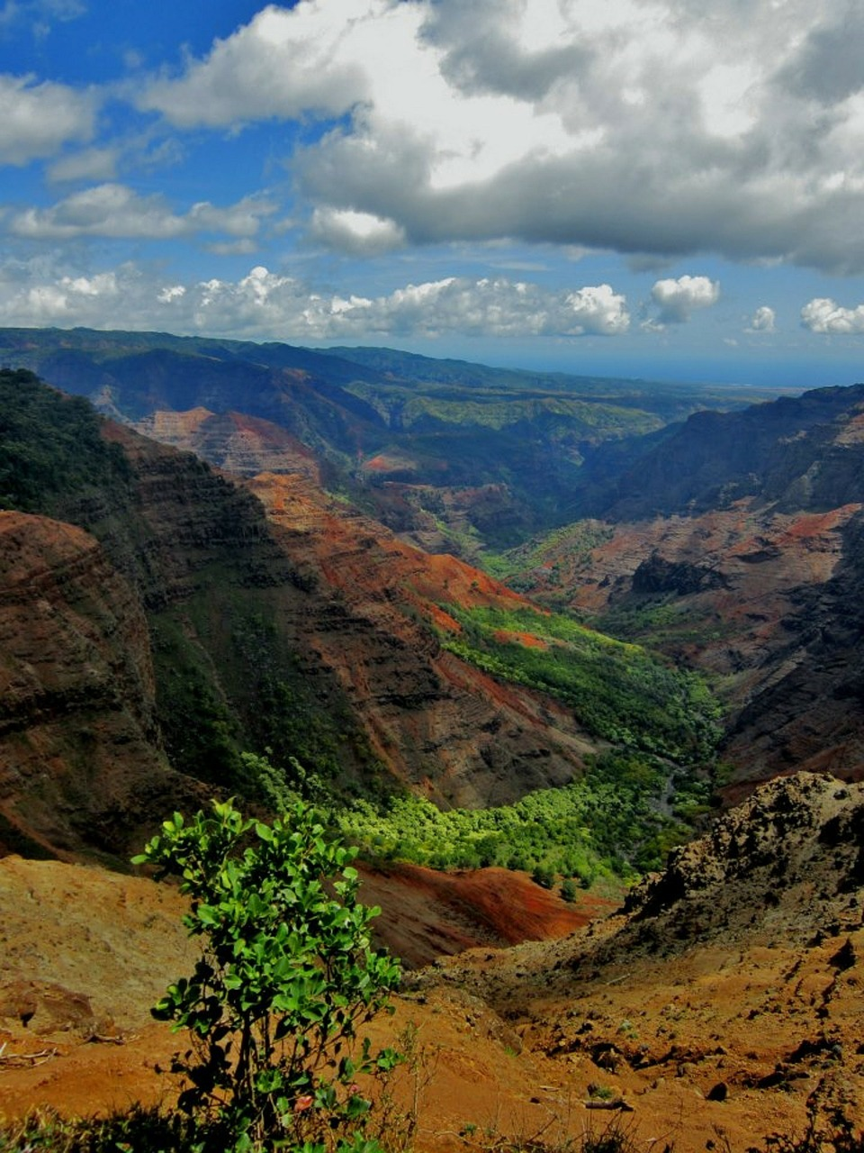 Outstandig Nature - Waimea canyon, Hawaii