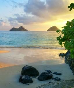 AReasons to Move To Hawaii!