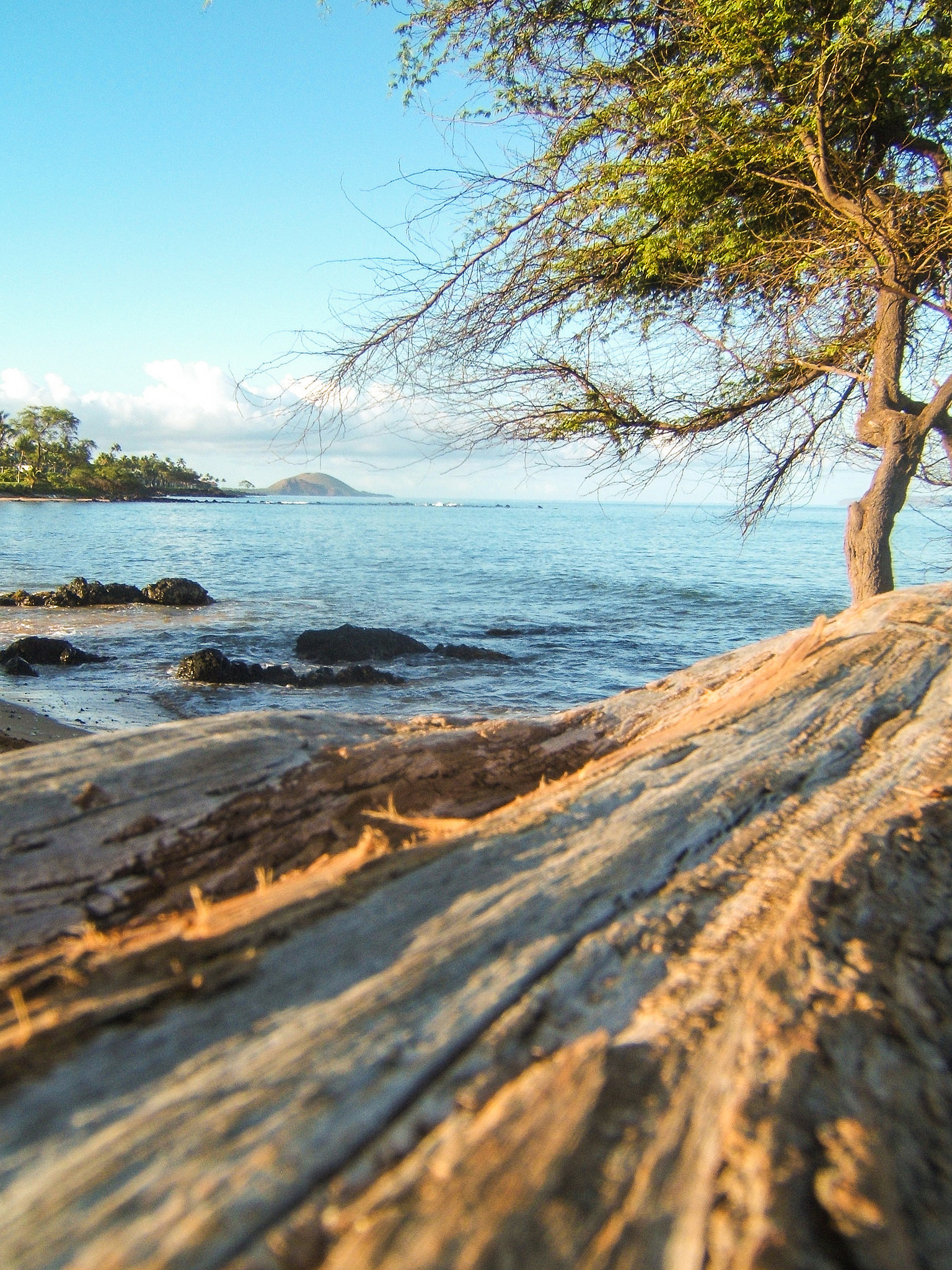 The Omg! Insider Guide To Maui Beaches