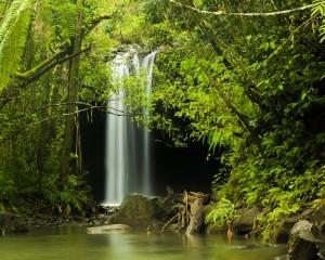 Twin Falls Road to Hana Maui