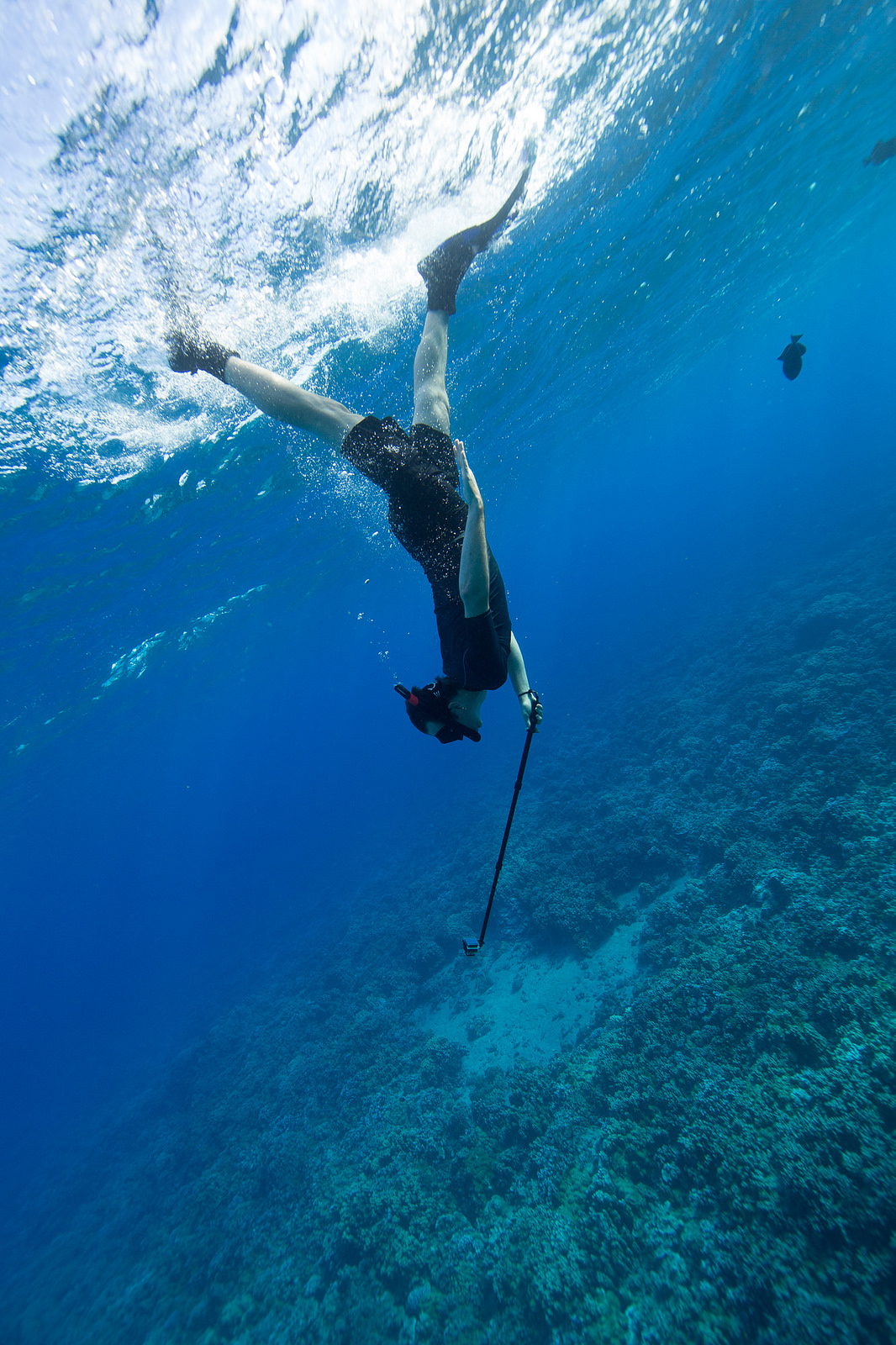 Freediving on Molokini Island