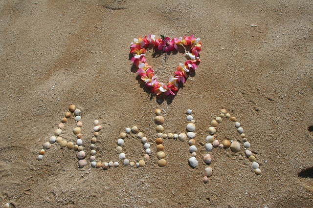 Insider Secrets to Know Before Your Hawaiian Vacation